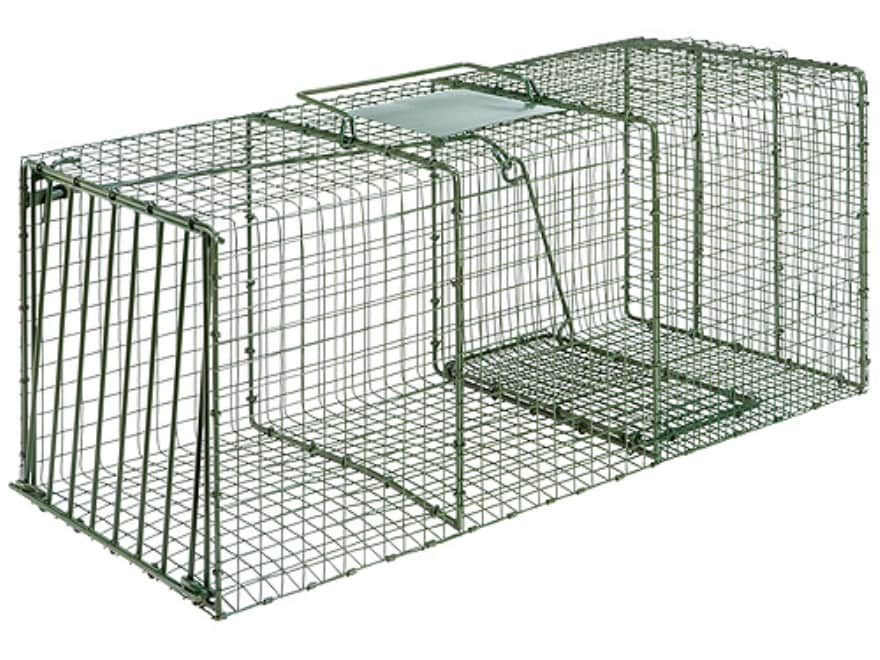 Duke HD X-Large Heavy Duty Single Door Cage Trap Steel Green